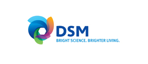 DSM, Heerlen, The Netherlands, USA, Stanyl, biopolymers, Succinic Acid, High temperature nylons, Ecopaxx